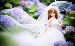 Picture umbrella, doll, the bride, hydrangea