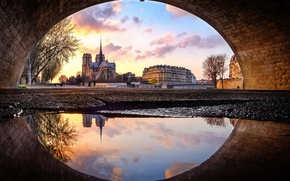 Picture Notre Dame Cathedral, Notre Dame de Paris, what kind of mother?