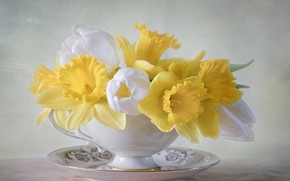 Picture flowers, bouquet, plate, Cup, tulips, daffodils