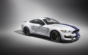 Picture Mustang, Shelby, Car, GT350, Sportcar