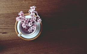 Wallpaper spring, cherry, mood, mood, twigs, mug, table, spring