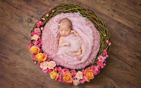Wallpaper flowers, basket, infants, wicker, baby, basket