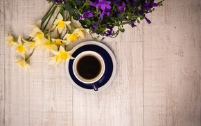 Picture flowers, coffee, drink, flowers, daffodils, coffee