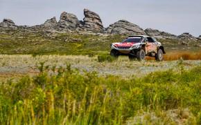 Picture Grass, Rocks, Sport, Speed, Race, Dirt, Peugeot, Lights, Red Bull, Rally, Rally, Sport, Overcast, DKR, …