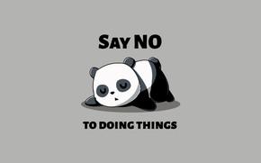 Picture minimalism, sleeping, humor, simple background, Panda, say no