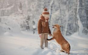 Wallpaper forest, Fox, friends, mood, winter, red, snow, girl