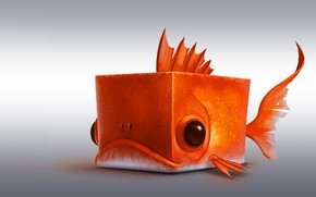 Picture fish, art, cube, square, Red fish Cube, romain flamand