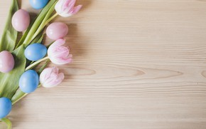 Picture flowers, spring, Easter, tulips