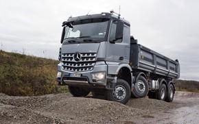 Picture grey, overcast, vegetation, Mercedes-Benz, crushed stone, primer, dump truck, Arocs, four-axle
