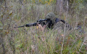 Picture weapons, sniper, special forces