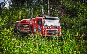 Picture Nature, Grass, Trees, Forest, Sport, Race, Dirt, Russia, Rally, Rally, MAZ, Silk road, Silk Way, ...
