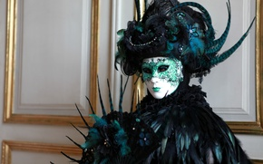 Picture feathers, mask, carnival