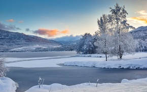 Picture trees, Norway, winter, mountains, snow, lake