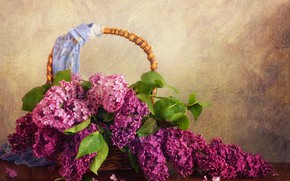 Picture basket, spring, lilac