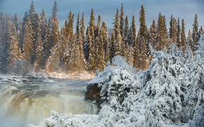 Picture winter, forest, river, waterfall, ate, Canada, Canada, Manitoba, Manitoba, Pisew Falls, Pisew Falls Provincial Park