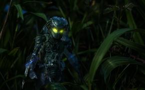 Picture grass, night, toy, predator, figurine, Predator, thing