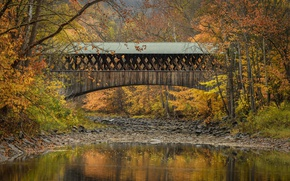 Picture autumn, trees, bridge, river, Blenheim, State of New York