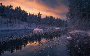 Wallpaper Ringerike, forest, river, winter, Norway, Ole Henrik Skjelstad