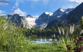 Picture mountains, lake, vegetation, water lilies, fishing lake