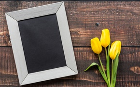 Wallpaper love, wood, frame, pink, romantic, March 8, tulips, yellow, yellow tulips, flowers
