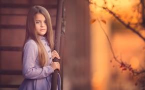 Picture portrait, girl, curls, bokeh, Meg Bitton