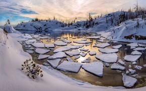 Picture winter, snow, shore, ice