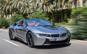 Picture road, grey, movement, markup, vegetation, speed, BMW, Roadster, hybrid, 2018, i8, i8 Roadster
