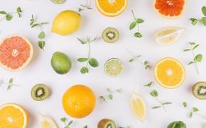 Picture lemon, orange, lime, fruit, leaves, orange, lime, fruits, kiwi, Collection