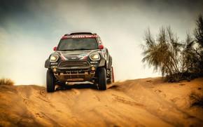 Picture Sand, Auto, Mini, Black, Sport, Machine, Speed, Race, Car, Rally, SUV, Rally, 101, X-Raid Team, …