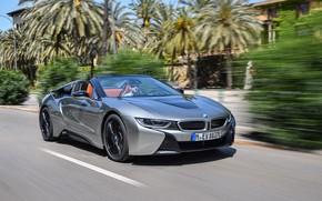 Picture road, grey, movement, markup, vegetation, BMW, Roadster, hybrid, 2018, i8, i8 Roadster