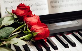 Wallpaper three, keys, notes, red, roses, piano
