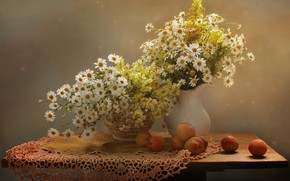 Picture summer, flowers, chamomile, August, still life, apricots