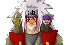 Wallpaper Naruto Shippuden, kanji, Naruto, to tysuyo, frog, Jiraya sage mode, by vergildvs, Shima, Fukasaku, Jiraya