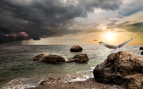 Wallpaper clouds, lightning, shore, Seagull, rain, sea, the storm, photoshop, bird, the sun, the sky, horizon, ...