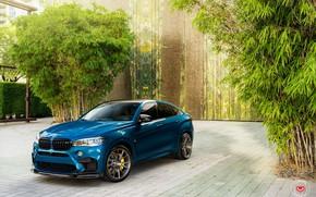 Picture BMW, X6M, BLUE