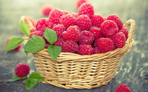 Picture basket, raspberry, berries