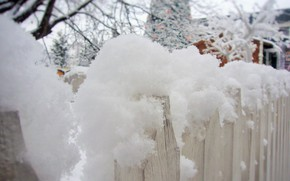Picture winter, snow, mood, the fence