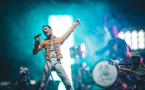 Picture concert, rock, figure, Freddie Mercury
