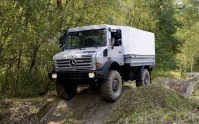 Picture forest, vegetation, Mercedes-Benz, truck, the roads, 4x4, Unimog, U4000