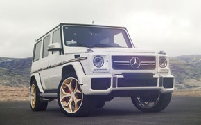 Picture Mercedes, AMG, White, G63, W463, Sight