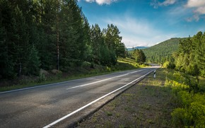 Picture greens, the sky, summer, asphalt, trees, road