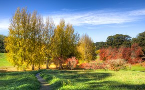 Picture Park, Mount Lofty Botanic Garden, trees, the bushes, path, Australia, the sun, the sky, grass, ...