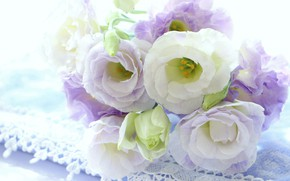 Picture flowers, bouquet, Eustoma, white-lilac