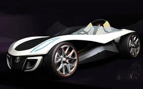 Picture concept, Peugeot, Roadster, flux