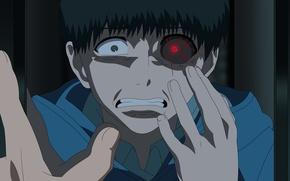 Picture anime, boy, fear, asian, manga, japanese, mirror, oriental, asiatic, strong, Tokyo Ghoul, Ken Kanek, by …