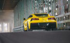 Picture yellow, design, rear view, Corvette Chevrolet