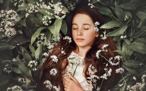 Picture flowers, sleep, girl, long hair, closed eyes, sleeping girl, Kate Kowalak