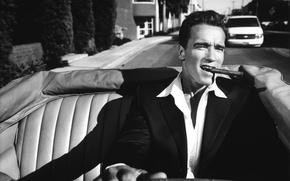 Wallpaper actor, Iron, Arnold Schwarzenegger, man, Arnold Schwarzenegger, Arnold