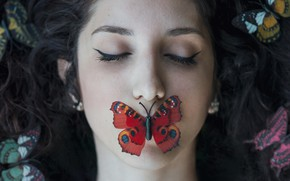 Picture girl, face, butterfly, hair, lies