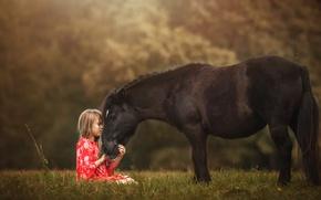 Wallpaper nature, pony, girl